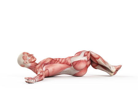 crunches: exercise illustration - negative situp Stock Photo