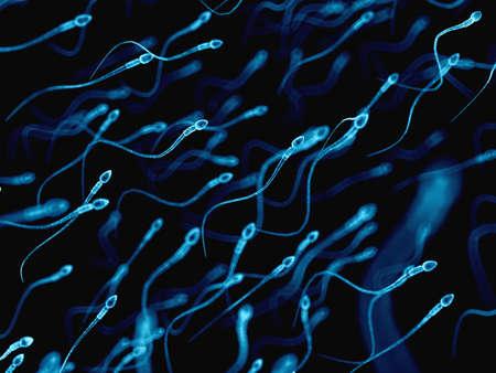 apparato riproduttore: illustrazione medico accurato di spermatozoi umani Archivio Fotografico