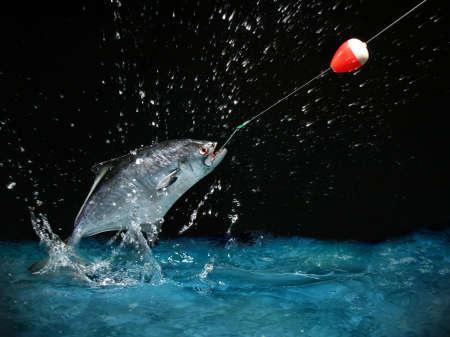 gevangen: Vangen van een grote vis met een hengel vissen in de nacht