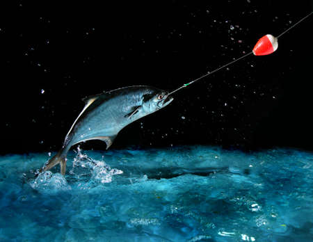 fishing pole: Catching a big fish with a fishing pole at night