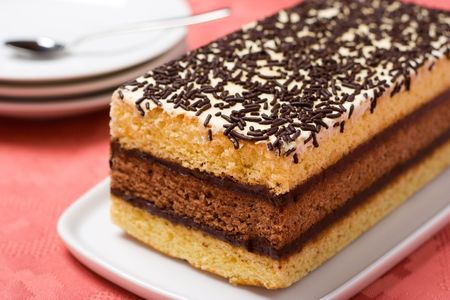 Italian sponge cake with chocolate filling on a white platter photo