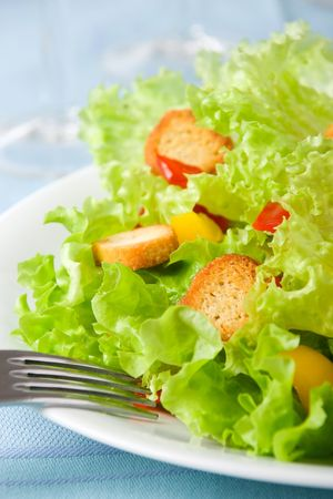 Batavian lettuce with tomatoes, peppers and croutons (shallow DOF) photo