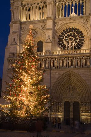 A Christmas tree in front of Notre-Dame cathedral - Paris, France photo