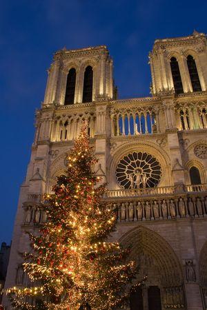 prayer tower: Un albero di Natale di fronte alla cattedrale di Notre-Dame - Parigi, Francia Archivio Fotografico