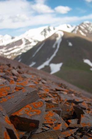 kyrgyzstan: Liquen rocas, Kirguist�n