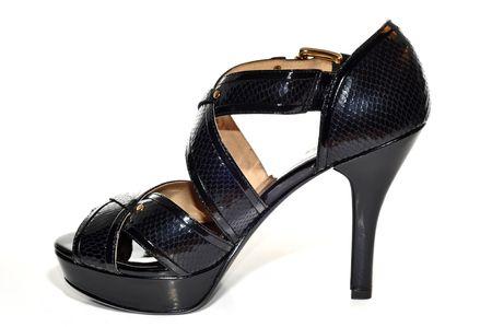 Sexy High Heel Shoe