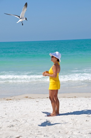 Attractive Woman on the Beach Feeding Seagulls photo