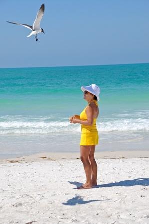 40 50: Attractive Woman on the Beach Feeding Seagulls Stock Photo