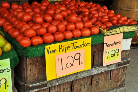 Fresh Tomatoes for Sale at Farmers Market photo
