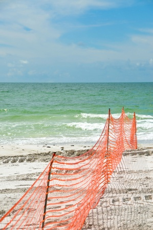 replenish: Erosion Protection on a Beach Restoration Project