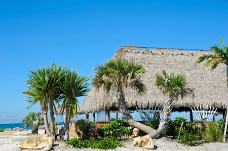 tiki bar: Beach Tiki Hut Bar on the Ocean