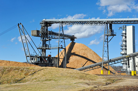 dumping: Conveyor Dumping Pulpwood in a Pile at a Paper Mill