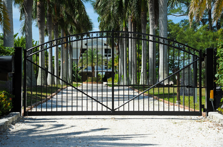 gated: Iron Security Gates Protecting the Entrance to a Palm Tree Lined Driveway Stock Photo