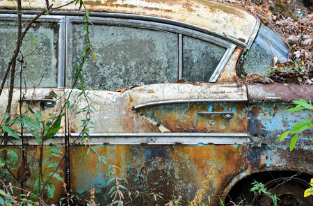 car grill: An old rusted out scrap car that has been abandoned in the woods
