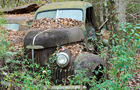 junkyard: An old rusted out scrap truck that has been abandoned in the woods Stock Photo
