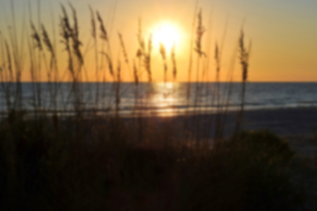 gulf of mexico: Blur Background Image of a Beach Sunset on the Gulf of Mexico