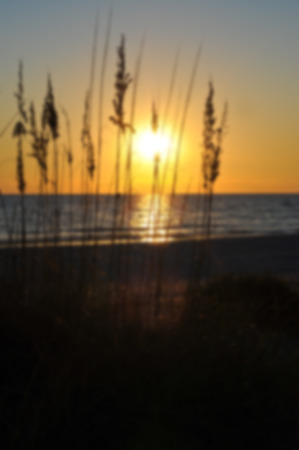 anna: Blur Beach Image of a beautiful sunset on the Gulf of Mexico