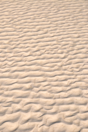 meanders: Abstract Water Pattern Left in the Sand on the Beach