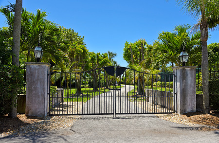 palm lined: black wrought gate to property with garden and palm tree lined driveway in background
