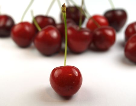 agro: cherries on a white background