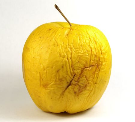 Very old yellow apple Stock Photo - 2095604