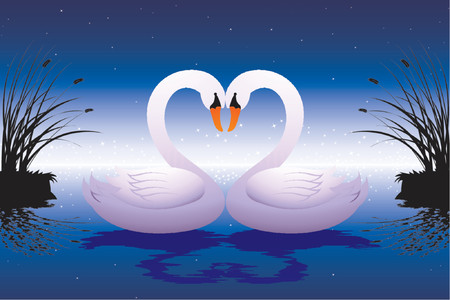 birds lake: loving swans Illustration