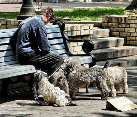 streetlife: Doggysitter