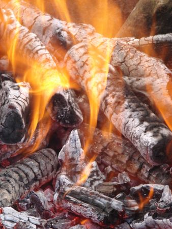 Flaming wooden coal logs of camping fireplace 04 photo
