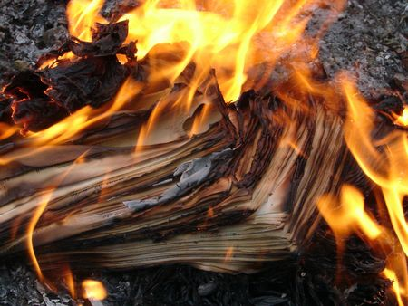 obliteration: Flame of burning paper sheet stack 06