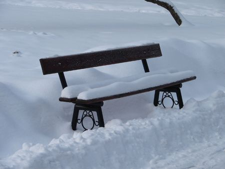 Snowy towm bench photo
