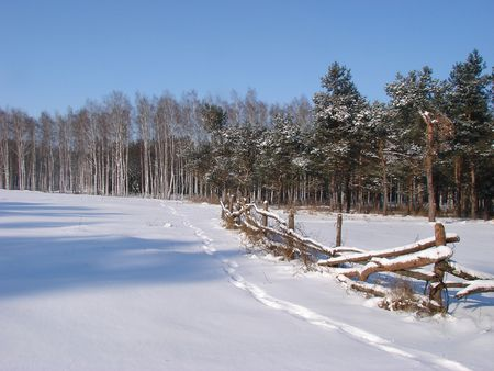 Winter snowy morning country landscape photo