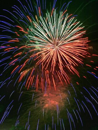 nightspot: Night celebration fireworks upon dark sky 01 Stock Photo