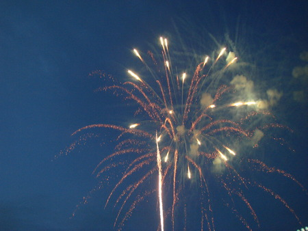 nightspot: Night celebration fireworks upon dark sky 06