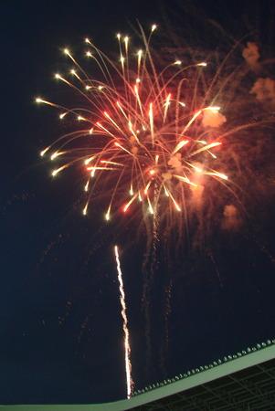 descriptive: Night celebration fireworks upon dark sky 07