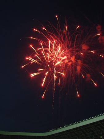 Night celebration fireworks upon dark sky 08 photo