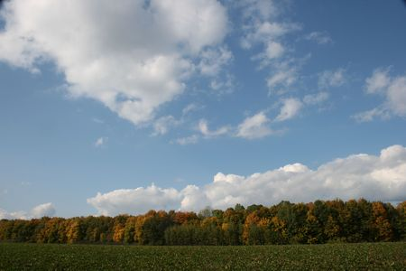 Cloudy deep ue sky over yellow autumn forest line photo