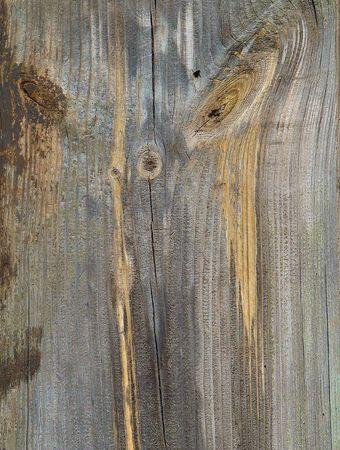 Knots on textured wooden plank like alien face photo