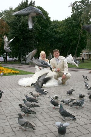 Groom and bride feeding pigeons outdoors in wedding day photo