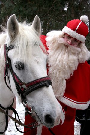 adult christmas: santa claus holds white horse Stock Photo