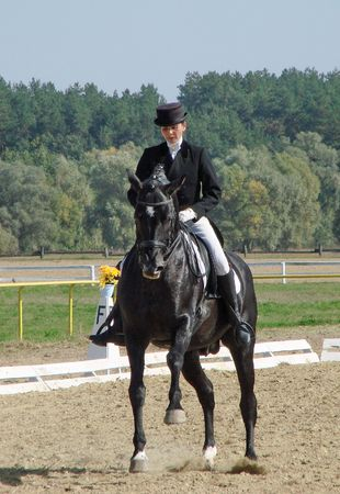 rein: equestrian sportswoman riding black stallion horse