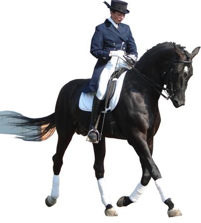 horse collar: equestrian lady riding black stallion horse Stock Photo