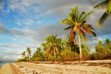 spectral color: Tropical exotic pristine Asian beach at dawn with palm trees and rainbow.