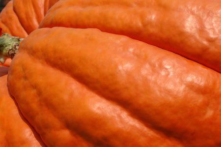 lb: close crop of a 790 lb pumpkin Stock Photo