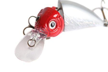 lure fishing: Di pesca utilizzati per attirare pesce predatore