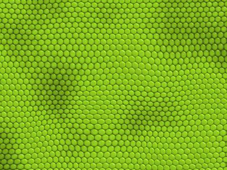 Reptile texture - iguana Stock Photo