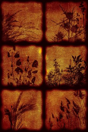 Vintage artistical stylish background, grainy texture. Flora theme