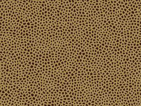 peltry: Animal fur texture - giraffe