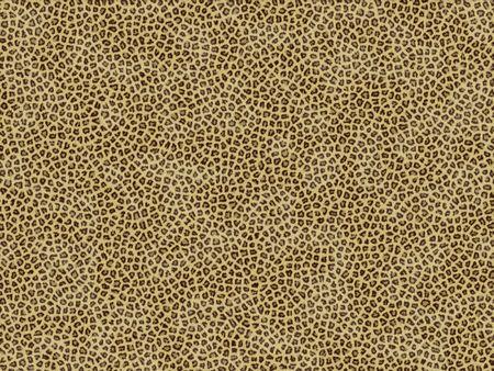 peltry: Animal fur texture - jaguar
