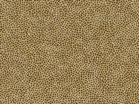Textura animal de la piel - jaguar Foto de archivo - 512107