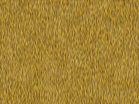 peltry: Animal fur texture -  tiger